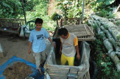 Cara Membuat Pupuk Kompos dari Jerami Padi (Praktis dan Mudah)
