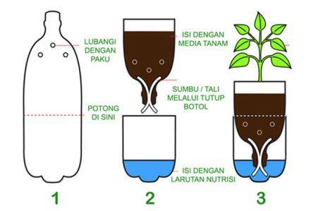 Cara Bertanam Hidroponik dengan Botol Bekas !! Mudah Banget