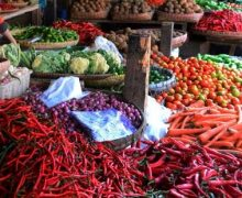 Penyebab Harga Produk Pertanian Tidak Stabil !! Apa saja?