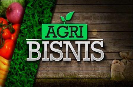 Pengertian Agribisnis, Menurut para ahli agribisnis!!