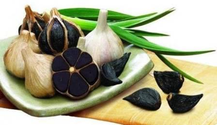 Black garlic (Garlic) and Benefits for health