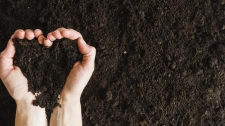 6 Kelebihan Pertanian Organik, Apa Saja?