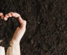Ciri Tanah yang Subur untuk Pertanian, Apa Saja?